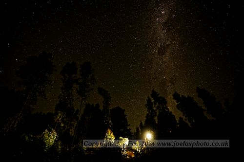 Joe Fox Fine Art - milky way and night sky above forest and camp in woods in southern hemisphere