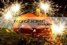 illuminated halloween pumpkin jack-o-lantern with sparklers